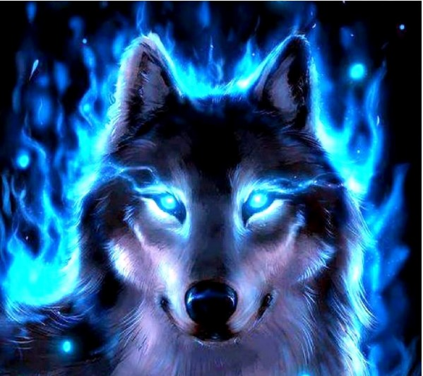 Blue Wolf Radio SC2VS