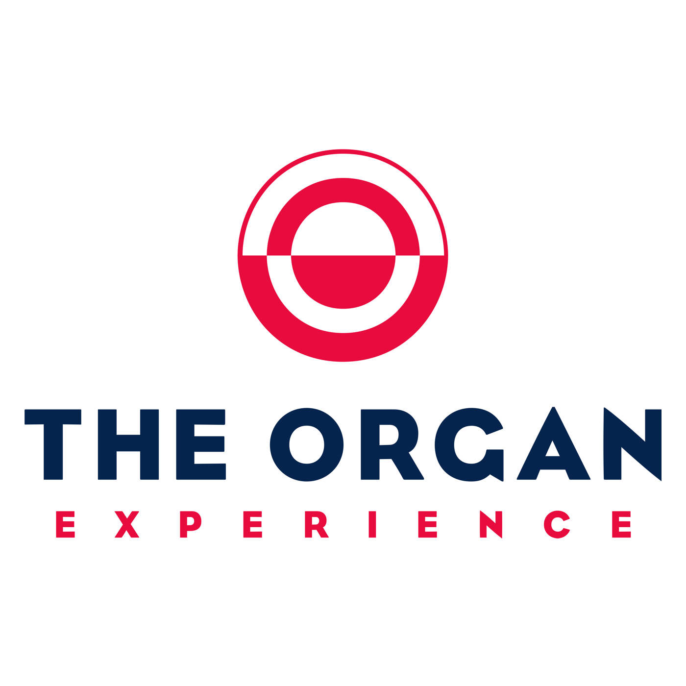 The Organ Experience 128k