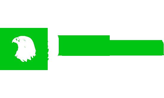 Falcon Radio Limburg