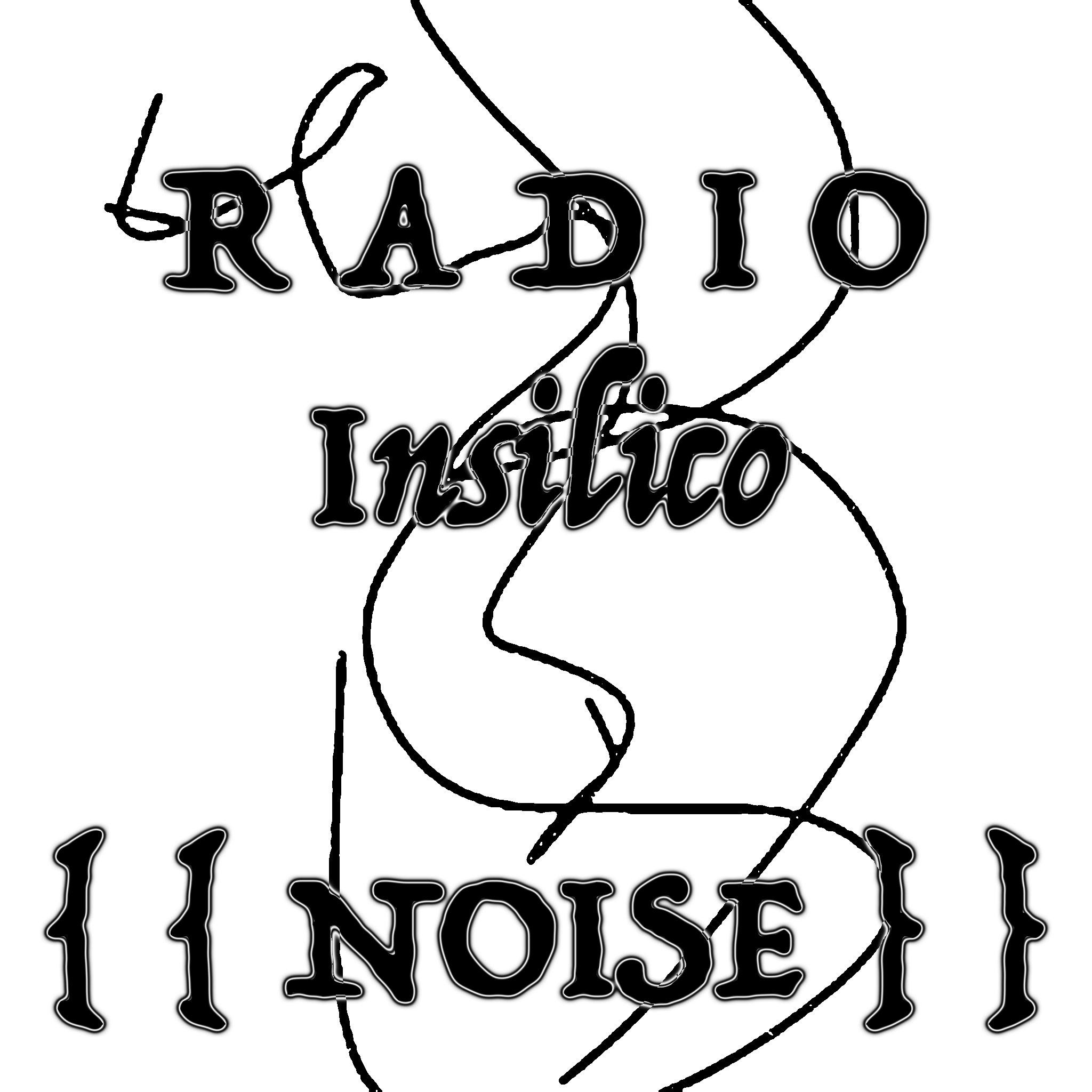 Radio Insilico