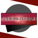 RadioNightOwlsOfficial logo