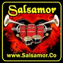 Salsamor.co logo