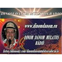 Dinom Danom mulatos radio