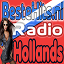 BesteHits.nl Hollands! logo