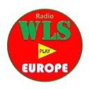 WLSEurope logo