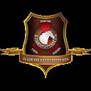 Nederlandsepiraten logo