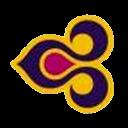 fsx virtual logo