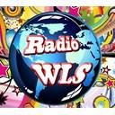radiowlsbel logo