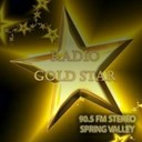 RADIO GOLD STAR FM 90.5 logo